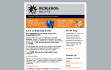 Email marketing for Hedgehog Security